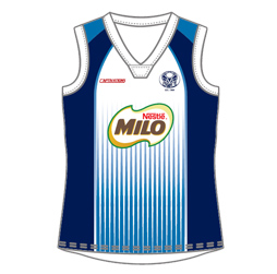 Image for sublimated cricket vest front view, custom team cricket apparel by Captivations Sportswear